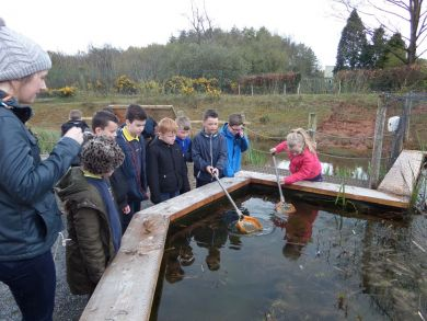 Pond dipping.